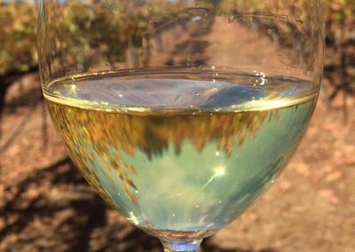 Sierra Vista Event Room - Glass of White Wine