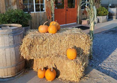 Sierra Vista Vineyards and Winery - Fall Scene