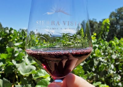 Sierra Vista Vineyards and Winery - Wine Glass in the Sun